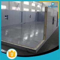 Fire Proof Modular Freezer Cold Room Perfect Heat Insulation For Frozen Fish for sale