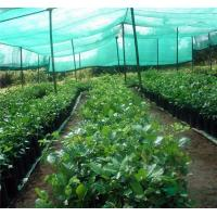 China agricultural shade net on sale