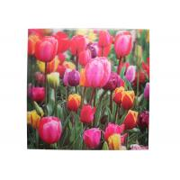 Wholesale Frameless 3D Pictures Custom Lenticular Printing PET Printing 40x40cm from china suppliers