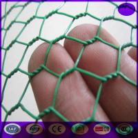 Wholesale Green Carbon Steel Chicken Wire Mesh Fencing Electric Poultrynetting from China from china suppliers