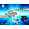 5m 5050 RGB led strip 60leds/m  led strip,WhitePCB, with 44 keys IR Remote controller for sale
