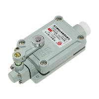 China 2 Pole Explosion Proof Safety Switch ,Gray Explosion Proof Limit Switch on sale