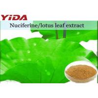 Quality Lotus Extract Nuciferine Weight Losing Raw Materials Root / Leaf / Seeds for sale