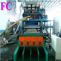 China Egg Tray Packing Machines / CE on sale