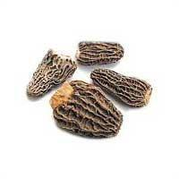 China Dried Morel Mushrooms on sale