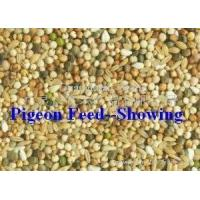 Wholesale Pigeon food from china suppliers