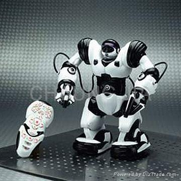 Quality R/C Robot for sale
