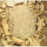 China White Button Mushroom powder on sale