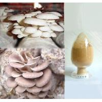 Wholesale Pleurotus ostreatus extract from china suppliers