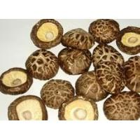 Buy cheap dried flower shiitake mushroom from wholesalers