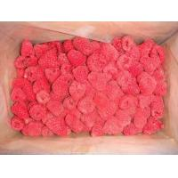 Buy cheap IQF Fruits IQF Raspberry from wholesalers
