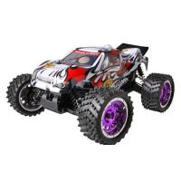 China TPGT-1673W Gas Powered RC Car on sale