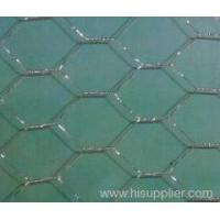 Wholesale Hexagoanl Wire Mesh from china suppliers