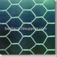 Wholesale Hexagonal Wire Nettings TJZ227 from china suppliers