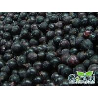 Buy cheap IQF Fruits black currant from wholesalers