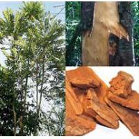 Wholesale Standardized Extract Yohimbe Bark Extract from china suppliers