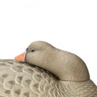 Buy cheap Goose Decoys Hard Core Floating White Front Goose Sleeper 6 Pack from wholesalers