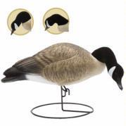 Buy cheap Goose Decoys Full Body Feeding Goose Hard Core Full Body Feeding Canada Goose 6 Pack from wholesalers