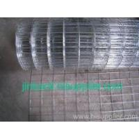 Wholesale Hot Dipped Galv Welded Wire Mesh from china suppliers
