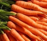 Buy cheap Hot Products Carrot Juice from wholesalers