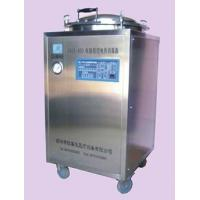 China CKDX-400  Program-controlled Electric-heated Sterilizer on sale