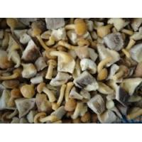 Wholesale Frozen Blended mushroom RC-FV-029 from china suppliers