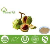 Plant Extracts Horse Chestnut Seed Extract - Aescin 20%