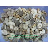 Wholesale IQF Mushrooms IQF Mixed Mushrooms from china suppliers