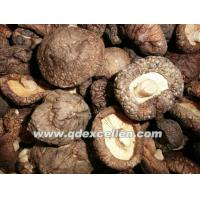 Wholesale Dried Products Shiitake from china suppliers
