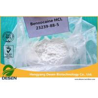 Pain Killer Powder Topical Pain Reliever Powder Benzocaine HCl