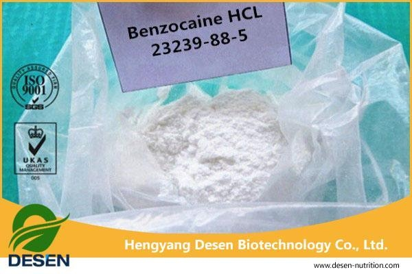 Quality Pain Killer Powder Topical Pain Reliever Powder Benzocaine HCl for sale