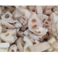 China Fresh Lotus Root Organic Frozen Food ProductsNO Preservatives Added For Adult on sale