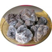 Wholesale Truffle Frozen Truffle from china suppliers