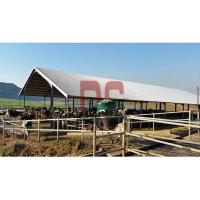 Prefabation Steel Structure Dairy Cow Shed Farm