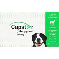China Capstar Green Box Flea Oral Treatment for Large Dogs Over 25lbs. 6 Pill/tablets on sale