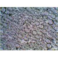 Wholesale Hollow Glass Microspheres HN32 from china suppliers
