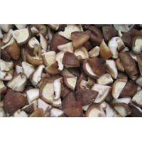 Wholesale Shiitake Cube from china suppliers
