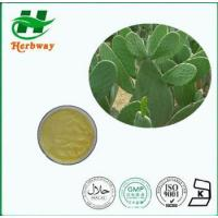 Buy cheap Cactus Extract from wholesalers