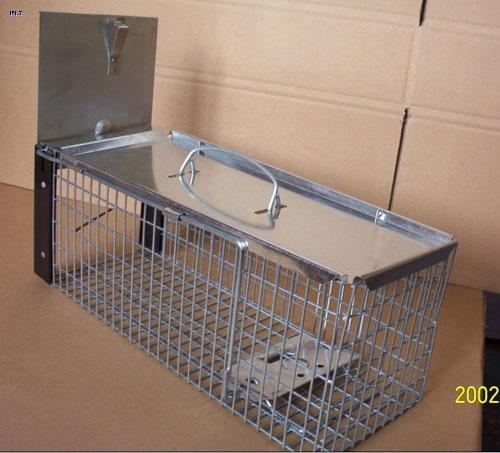 Quality rat trap cage A-1025 for sale