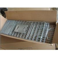 Buy cheap feral cat trap cage F-091 from wholesalers