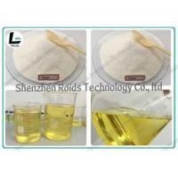 Wholesale Fat Loss Muscle Building Steroids CAS 315-37-7 Testosterone Enanthate 250 from china suppliers