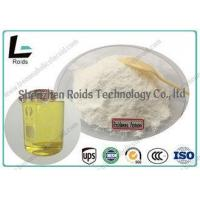 Wholesale Natural Muscle Building Powder , CAS 13103-34-9 Boldenone Undecylenate 300 from china suppliers