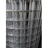 Wholesale welded wire mesh/electro galvanized before welded from china suppliers