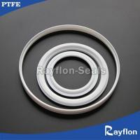 China PTFE Seating Rings For Butterfly Valve on sale