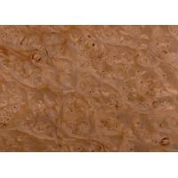 Wholesale maple burl Name:Maple burl from china suppliers