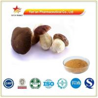 Wholesale Wholesale Pure Natural Boletus Extract/Porcini Powder from china suppliers