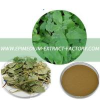 Wholesale Wholesale high quality natural epimedium extract powder from china suppliers