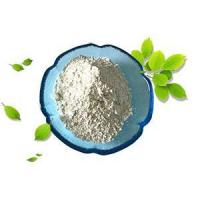 Wholesale Chitosan from china suppliers