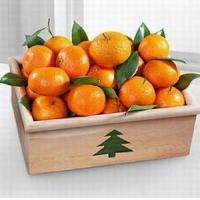 Wholesale Holiday Satsuma Mandarin Crate NO.13 delivery basket to china from china suppliers