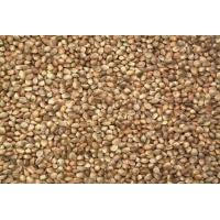 Wholesale Seed Unshelled Hemp Seed from china suppliers